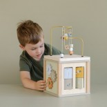Activity Cube - Little Goose