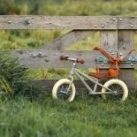 Balance Bike - Matt Olive