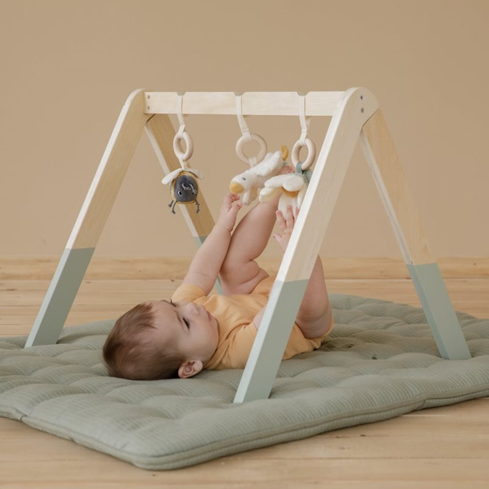 Baby Gym - Little Goose